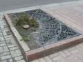 В центре Киева срубили около 90 деревьев