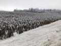 Под Полтавой и Кропивницким на полях выпало рекордное количество снега