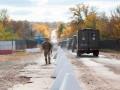 Сепаратисты обстреляли участок разведения на Донбассе