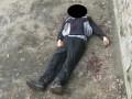 В Николаеве самоубийца прыгнул в вольер с тиграми