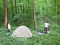 В Киеве усилят патрулирование парков