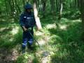 За время войны на Донбассе ГСЧС разминировала 13 тысяч гектаров территории
