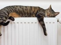 Жители Киева смогут досрочно отключать отопление в квартире