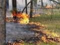ГСЧС объявила чрезвычайный уровень пожароопасности