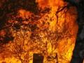 В России подросток сжег себя заживо