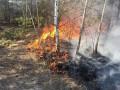 Из Беларуси на Украину надвигаются лесные пожары