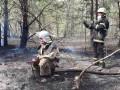 Зону отчуждения охватил лесной пожар