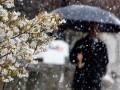 В Украине будет тепло еще полторы недели - синоптики