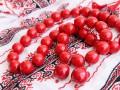 Евродепутаты надели вышиванки в знак поддержки Украины