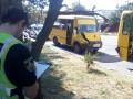 В Херсоне два ребенка пострадали в столкновении маршруток