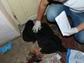 В Тернопольской области пьянка закончилась убийством