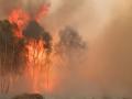 В Германии взрыв фосфорной бомбы вызвал масштабный пожар