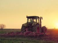 Минюст планирует передать тюремные земли агрохолдингам