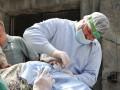 В Киеве гималайским медведям полечили зубы и сделали маникюр