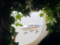 В Одессе зарегистрировали первый брак на борту самолета