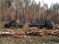За последнее десятиление в Украине вырубили 4 млн га леса