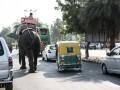 На Шри-Ланке слон перевернул прогулочный транспорт