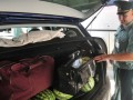 Россия запретила ввоз растительной продукции в багаже и молока из Украины