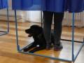 КИУ похвалил ЦИК и полицию за прошедшие выборы
