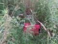 Чемодан с телом ребенка найден в Черновцах: Названа вероятная причина смерти