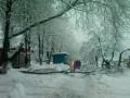 В Киеве вследствие снегопада упало 17 деревьев