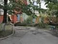 Львовская область пострадала от бури: повалены деревья и оборваны провода