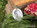 В Винницкой области 14-летний парень разгромил 60 могил