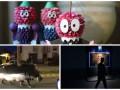 День в фото: Чиполлино-майдан, выставка в Киеве и побег бегемота