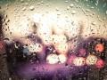 Прогноз погоды на неделю: в Украину возвращаются дожди