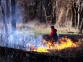 В Украине 5-й уровень пожароопасности: экологи бьют тревогу