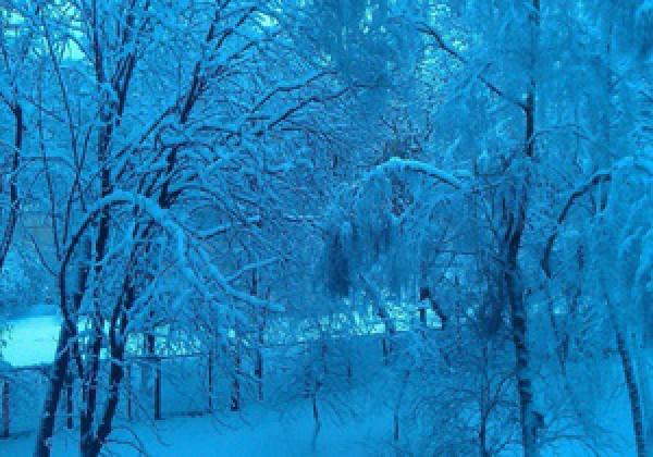 Погода в фрунзе луганская область