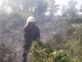 Кременчуг окутало дымом из-за пожаров вокруг города