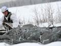 Российских военных будут готовить для службы в Арктике