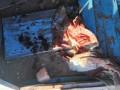 В Николаевской области на пустыре обнаружили тело новорожденного