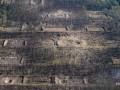 Разминирование Калиновки: саперы нашли более 2,5 тысячи боеприпасов