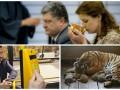 День в фото: Порошенко в Японии, тигрята в Китае и Кличко в автобусе
