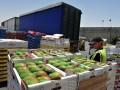 Россия за два года уничтожила 17 тысяч тонн санкционных продуктов