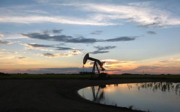 Цены на нефть выросли на полпроцента