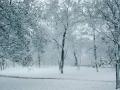 В Крыму выпал первый снег