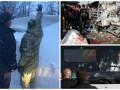 Итоги выходных: Аномальные снегопады в Украине и теракты на Ближнем Востоке
