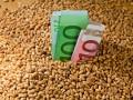 ЕС возвращает квоту на импорт кукурузы и ржи