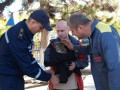 В Крыму спасли филина с подрезанными крыльями и связанными лапами