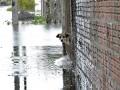 В Бразилии из-за наводнений и оползней погибли 30 человек