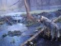 Уникальные животные в Чернобыле: лоси, рыси, волки и енотовидные собаки