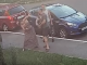 Депутат избил женщину за замечание взять питбуля на поводок