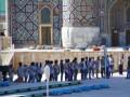 В Узбекистане водителей дорогих авто обязали возить гостей фестиваля
