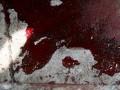 В Нигерии совершен взрыв в католическом храме: есть жертвы