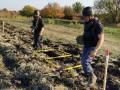 На Донбассе за неделю обезвредили почти 700 взрывоопасных предметов