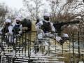 Минобороны показало учения десантников на Донбассе
