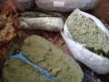 У киевлянина дома нашли больше 80 кг каннабиса на 2 миллиона гривен